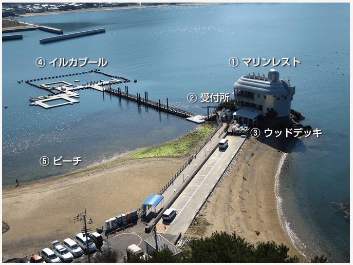 日本ドルフィンセンター