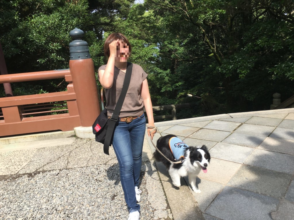 こんぴらさんに犬と登った