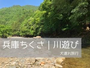 犬とお出かけ兵庫|川で遊べるおすすめスポット