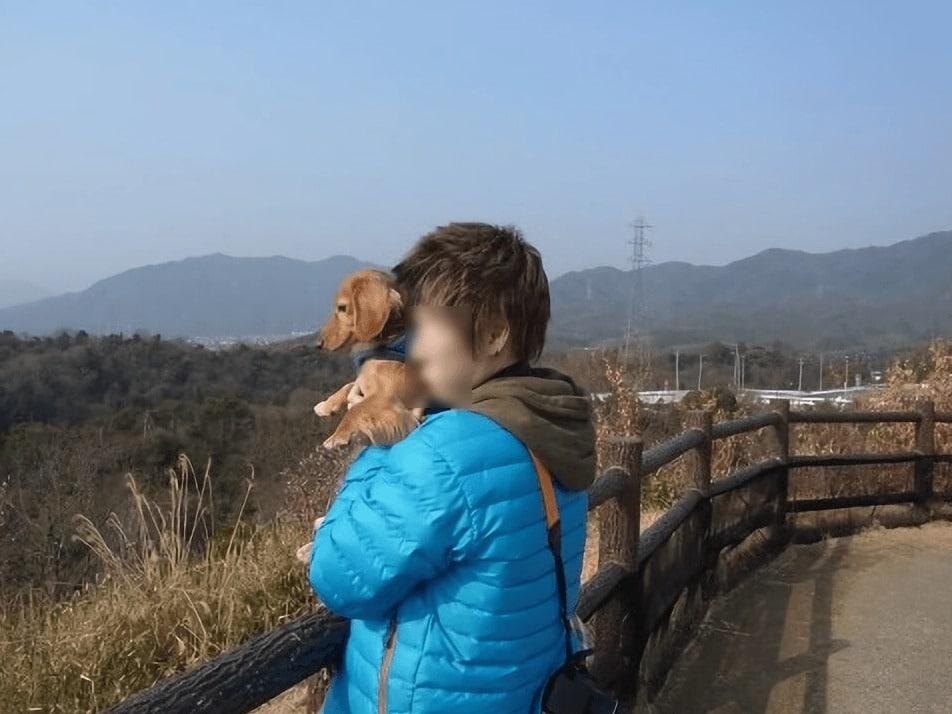 犬にも厳島神社を見せる
