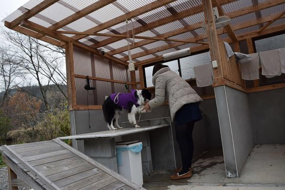 大分県民宿水分村の犬用の温泉