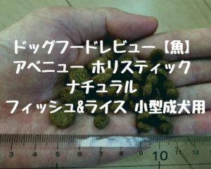 ドッグフードレビュー【魚】 アベニュー ホリスティック ナチュラル フィッシュ&ライス 小型成犬用