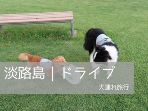 犬連れOK!のじまスコーラと淡路島公園
