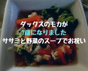 ダックスのモカが7歳になりました|ササミと野菜のスープでお祝い