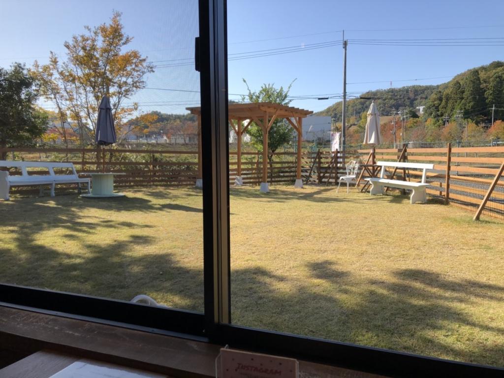 窓から見るドッグラン