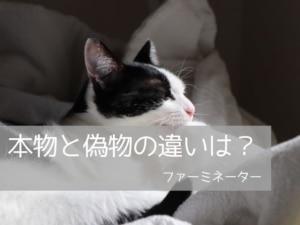 猫用ファーミネーターの偽物と本物の違いは?